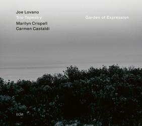 Cover Joe Lovano Trio Tapestry